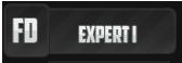 Expert I