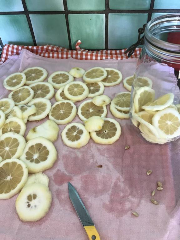 [Conservation] Citrons confits dans l'huile Img_2012