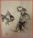 Amateur de Lotus (Nelumbo) 3_pois10