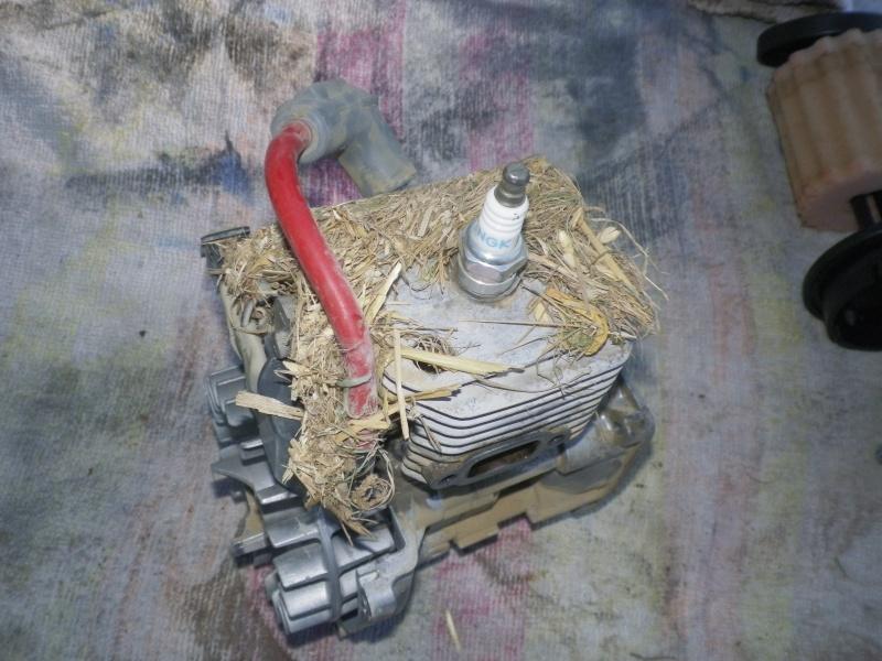 Démontage et remontage Monster et moteur par un novice Imgp4715
