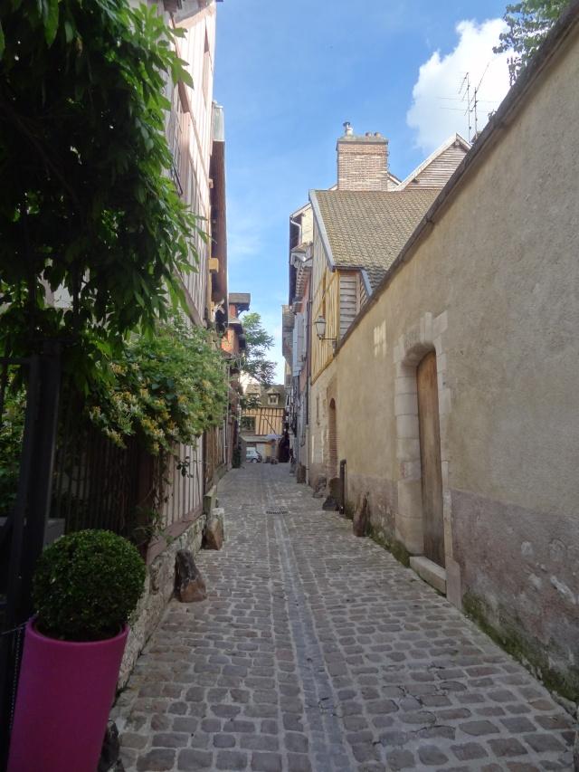 Compte rendu: Troyes entre Champagne et Chablis Dsc02410