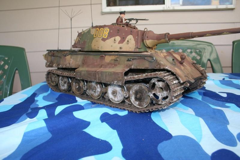 King Tiger 008 Img_5618