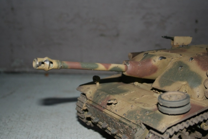 Reapers Stug 3 - Page 2 Img_5829
