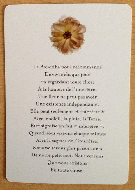 Les Tarots Divinatoires - Page 4 Carte10