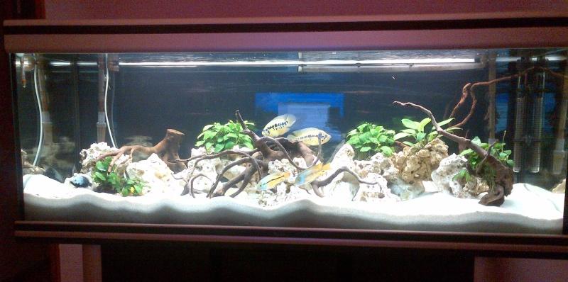Aquarium 450L Img-2010