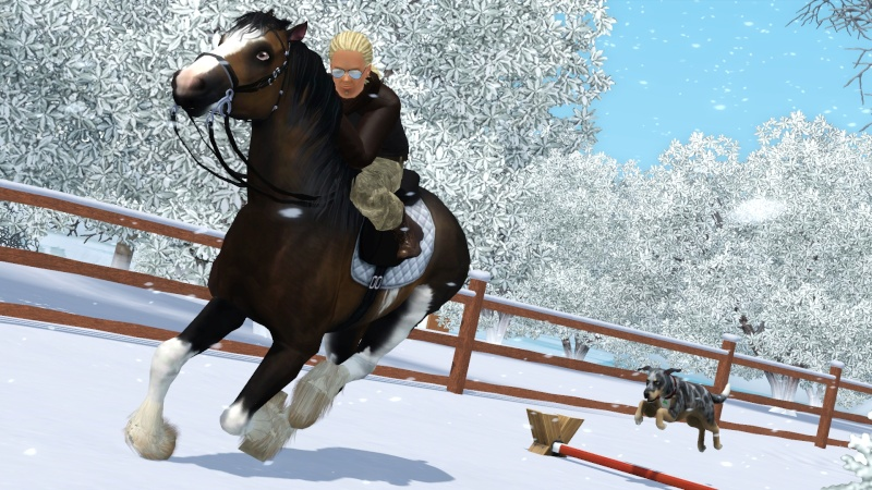 • Galerie d'animaux & de Sims de Nerwen • Screen13