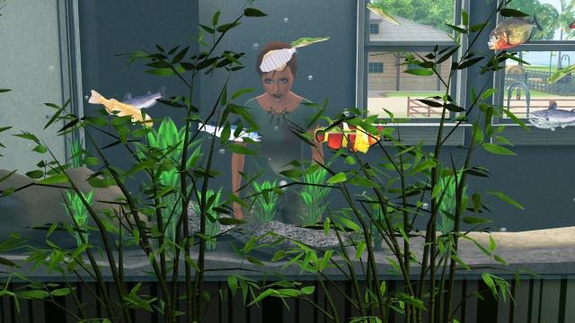 • Galerie d'animaux & de Sims de Nerwen • Screen30
