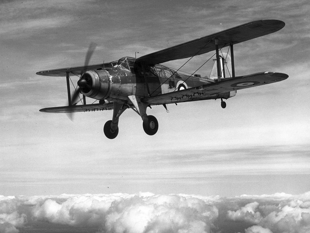 DOUGLAS TBD DEVASTATOR (Terminé) Fairey16
