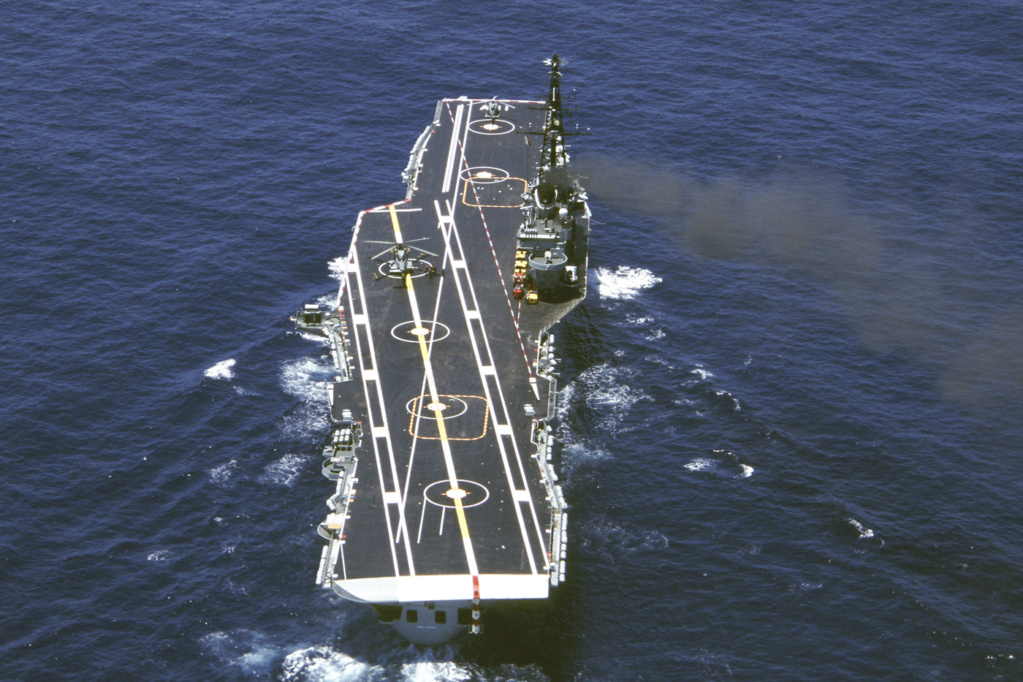 PORTE-HELICOPTERES HMS OCEAN (L-12) Minas_10
