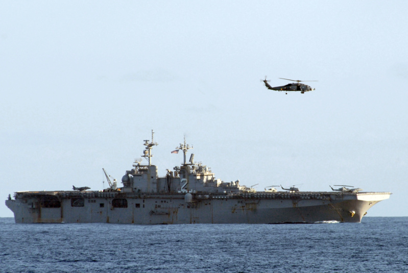 LANDING HELICOPTER DOCK (LHD) CLASSE WASP (TERMINE) Uss_es18