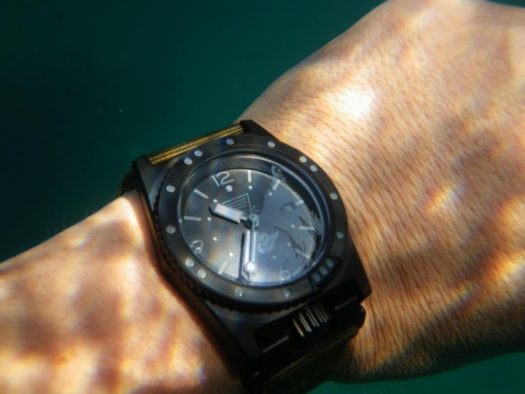 Votre montre du jour - Page 23 59c20910