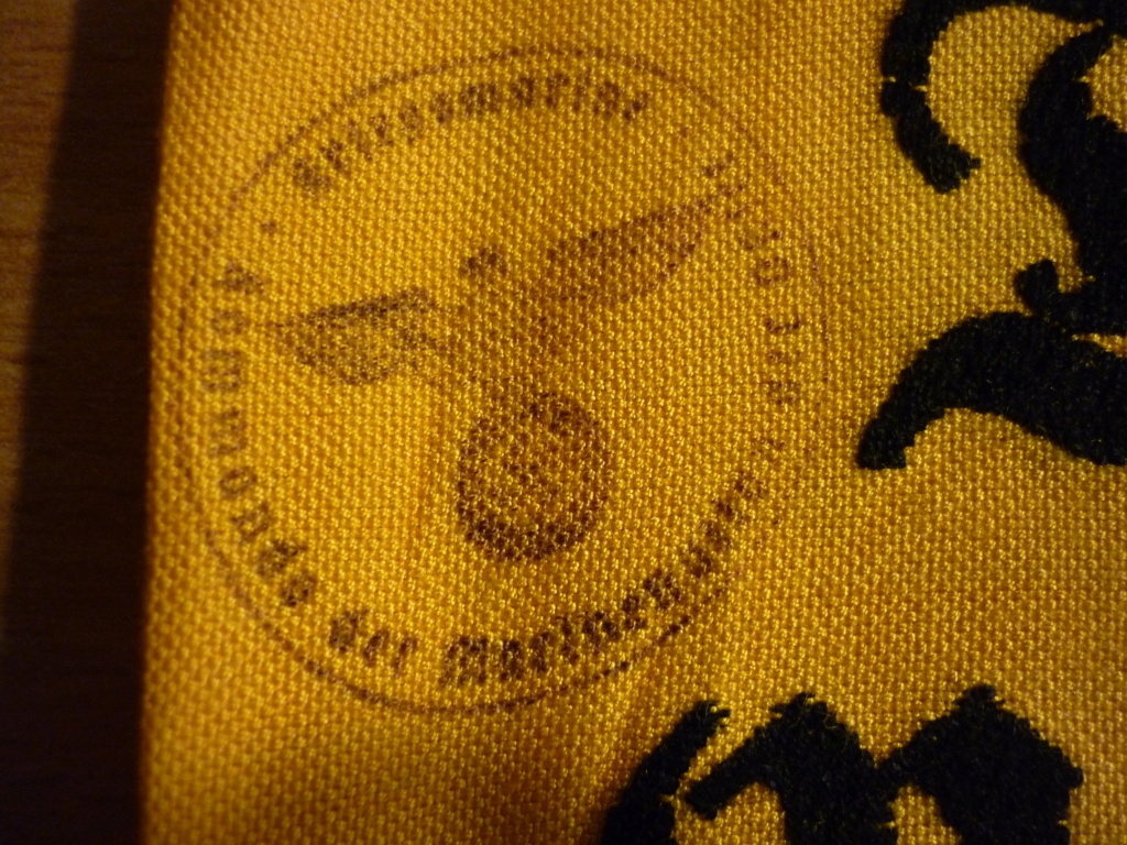 Insigne tissus et brassard P1010912