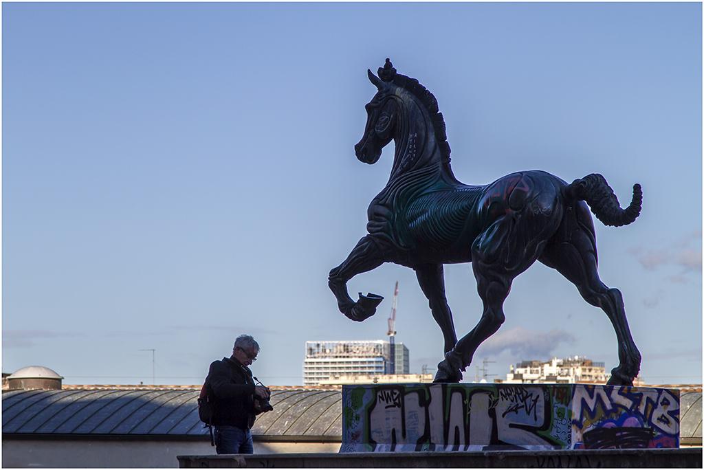 [Rue et Instants de vie] Statue Cavallo _mg_0611