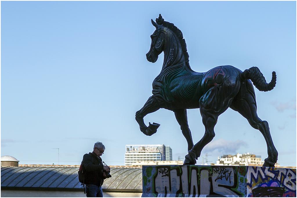 [Rue et Instants de vie] Statue Cavallo _mg_0612