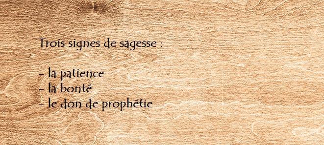 Les Triades Gaélique du An Trecheng Breth Féne Dscn0990