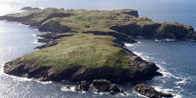 Le conte Druidique de la Branche d'Argent et de Bran MacFebal Dscn1014