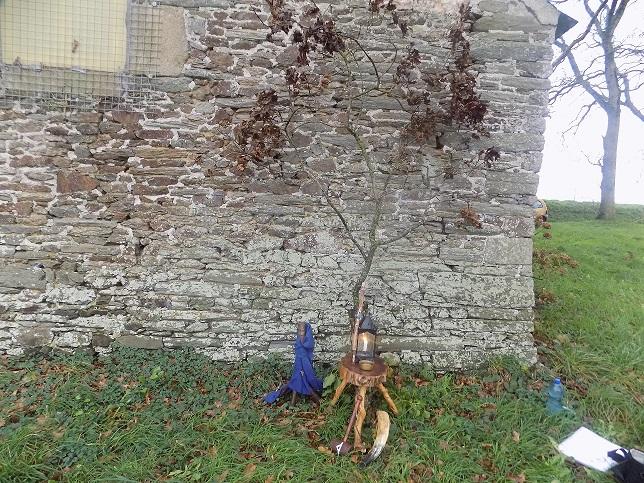 Yule en Bretagne.  Dscn1091