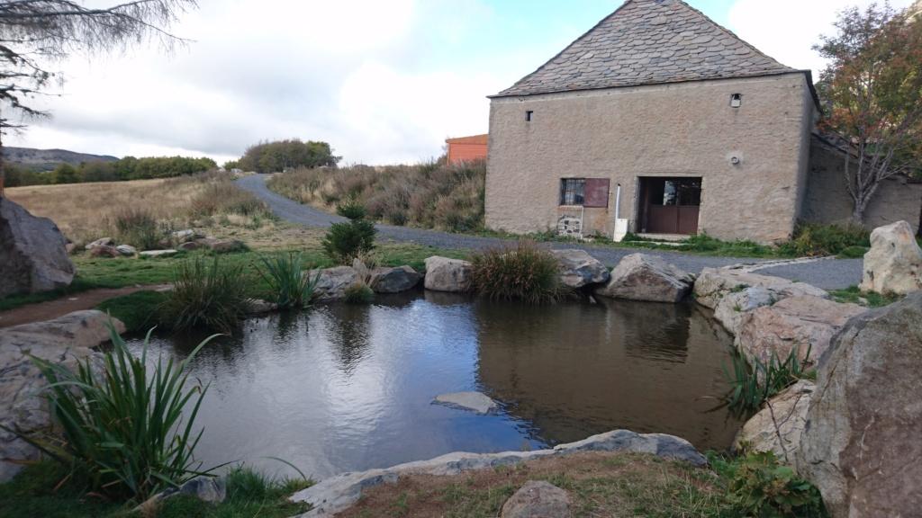 Sortie et AG en Haute Loire 4,5 et 6 OCT 2019 Dsc_2516