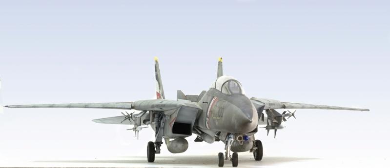 Grumman F-14D Super Tomcat. Trumpeter 03203. 1/32. 1041