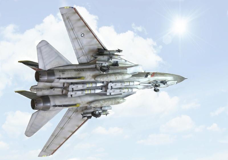 Grumman F-14D Super Tomcat. Trumpeter 03203. 1/32. 2012