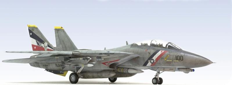 Grumman F-14D Super Tomcat. Trumpeter 03203. 1/32. 245