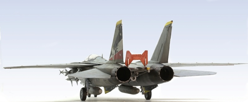 Grumman F-14D Super Tomcat. Trumpeter 03203. 1/32. 545