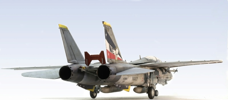 Grumman F-14D Super Tomcat. Trumpeter 03203. 1/32. 643