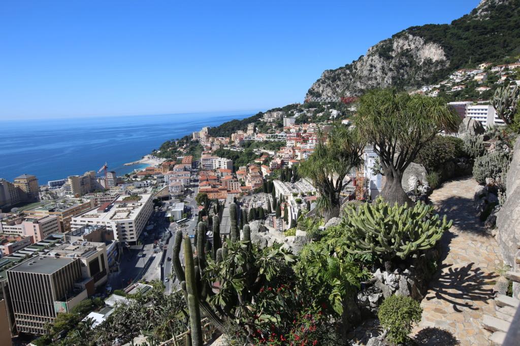 (Monaco) - Jardin exotique de Monaco  Img_3513