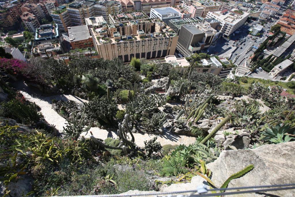 (Monaco) - Jardin exotique de Monaco  Img_3514