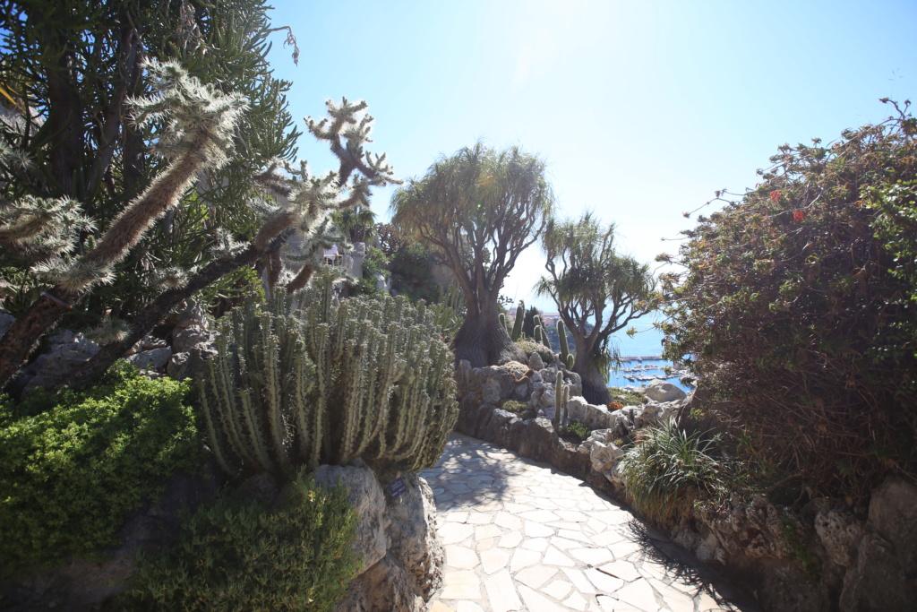 (Monaco) - Jardin exotique de Monaco  Img_3517