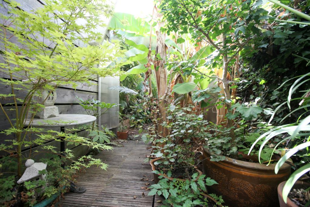 Gaëtan - Quelques ambiances de mon jardin - Page 2 Img_5110