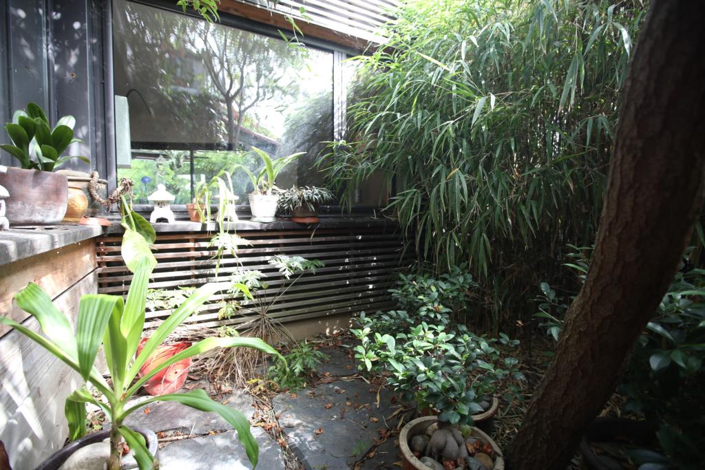 Gaëtan - Quelques ambiances de mon jardin - Page 2 Img_5229