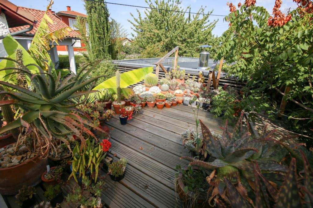 Gaëtan - Quelques ambiances de mon jardin - Page 2 Img_5234
