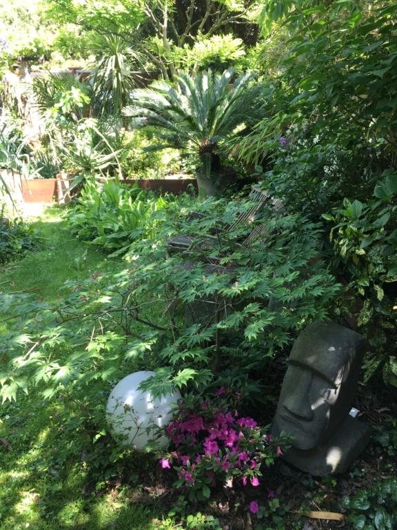 Gaëtan - Quelques ambiances de mon jardin - Page 3 Img_6111