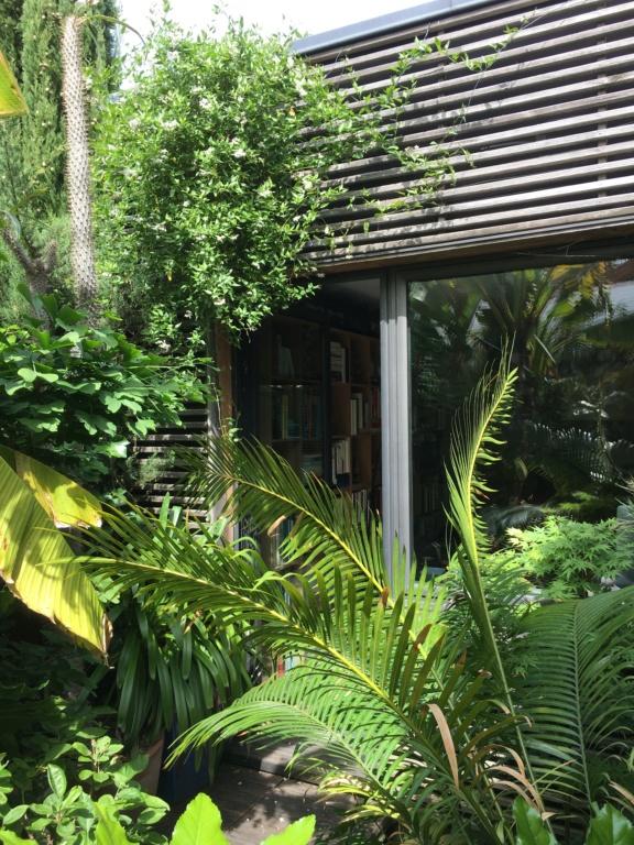 Gaëtan - Quelques ambiances de mon jardin - Page 3 Img_6215