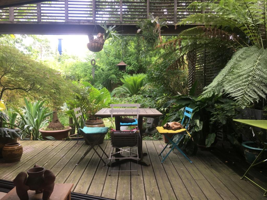 Gaëtan - Quelques ambiances de mon jardin - Page 3 Img_6614