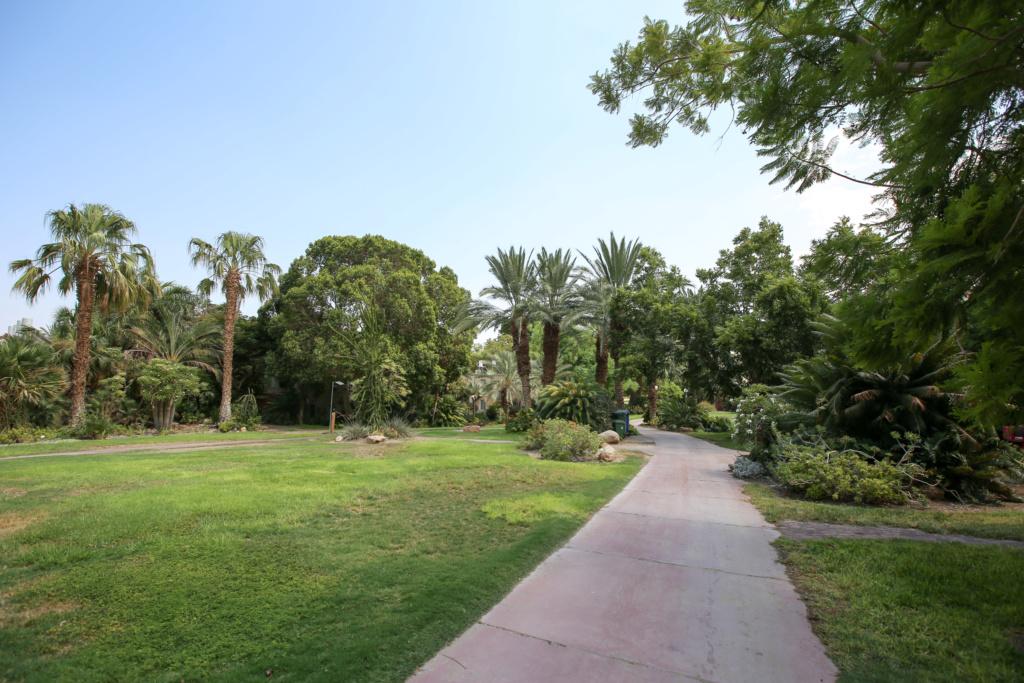 Israël - Jardin botanique d'Ein Gedi Mer_mo32