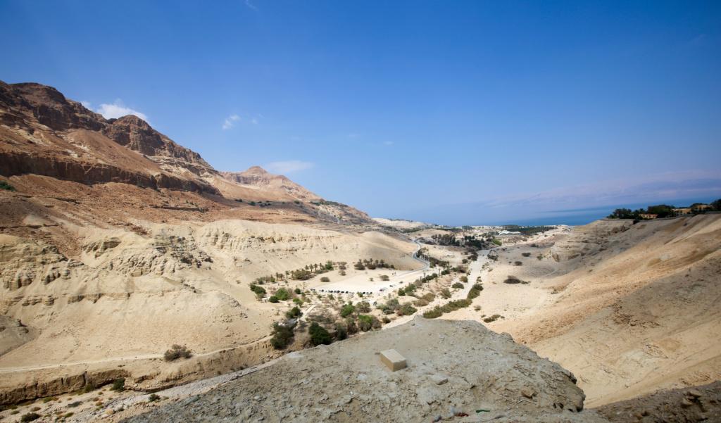 Israël - Jardin botanique d'Ein Gedi Mer_mo33