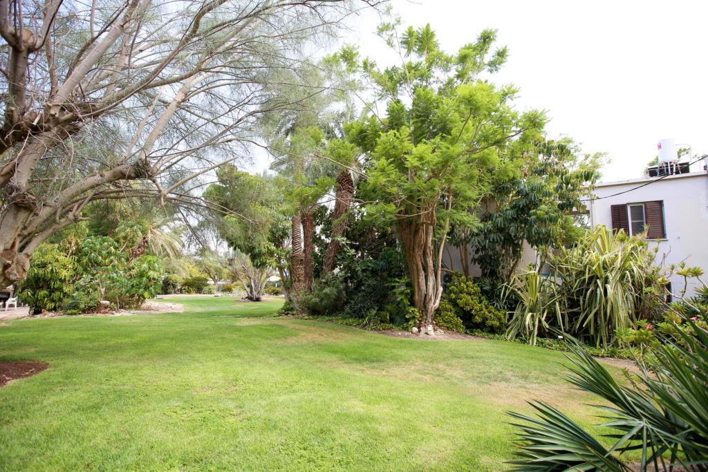 Israël - Jardin botanique d'Ein Gedi Mer_mo39