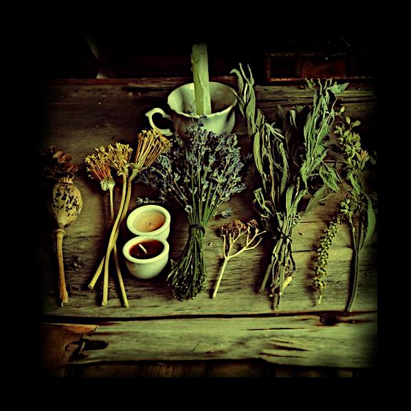 Скрытая сила трав: Основное руководство по Магии Трав. 122