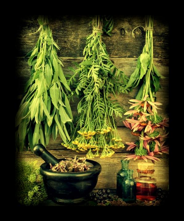 Скрытая сила трав: Основное руководство по Магии Трав. 123