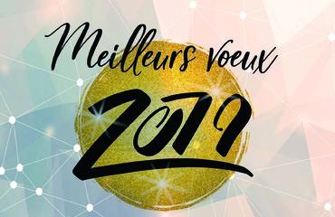 Adieu 2018 - bonjour 2019 - Page 2 201910