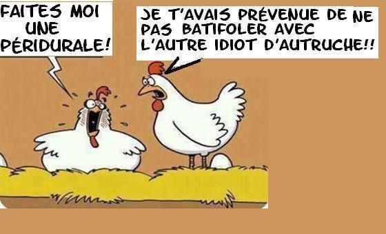 Images et dessins humoristiques - Page 15 Humour11