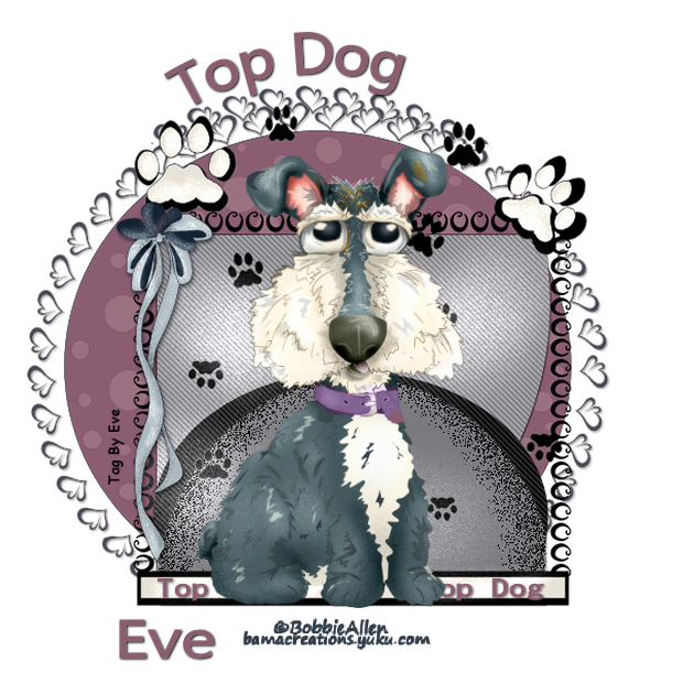 Top Dog - Page 9 Evetop24