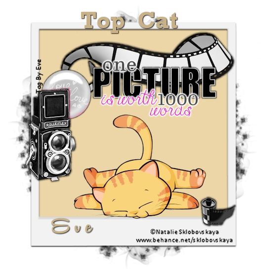 Top Cat - Page 12 Evetop35