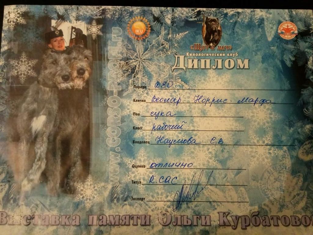 ВОСТОЧНО-ЕВРОПЕЙСКАЯ ОВЧАРКА ВЕОЛАР НОРРИС-МАРФА - Страница 2 Img_2060