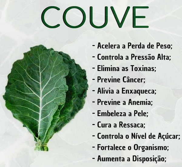 Benefícios da Couve Couve10