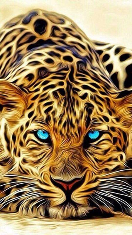 Melhores imagens da Net... Tigre10
