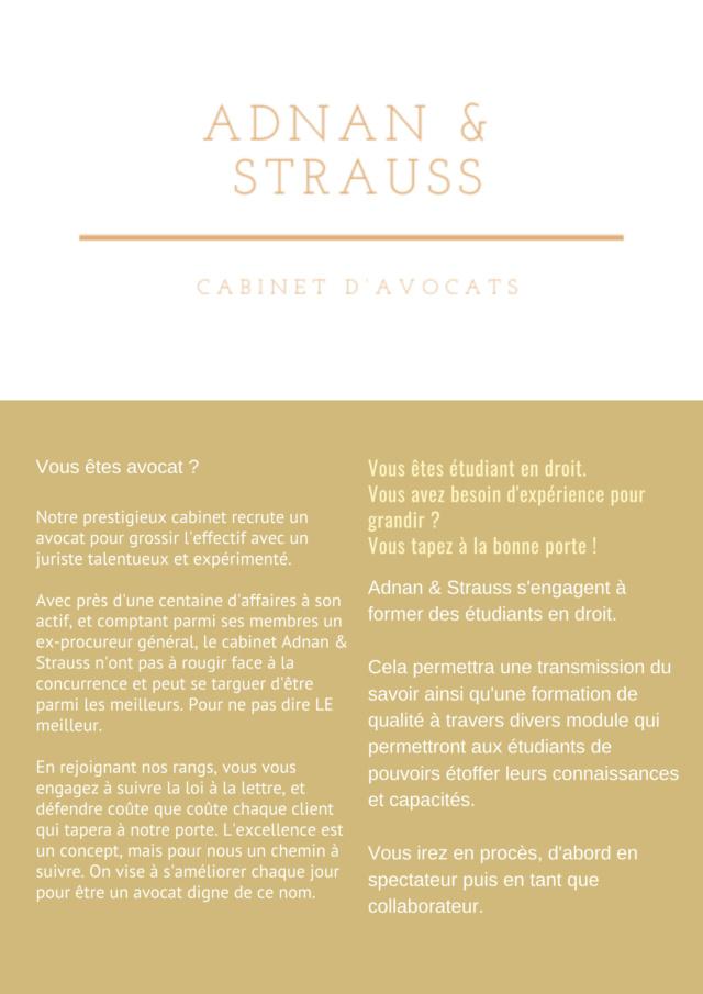 Le cabinet d'avocats Adnan & Strauss Adnans10
