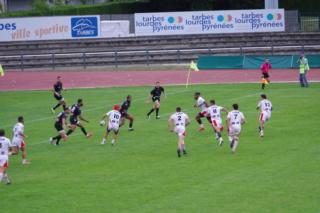 Stado - Stade Niçois - Page 6 Imgp2915